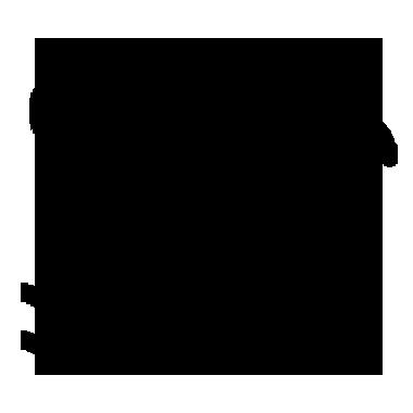 Tybee Island Icon